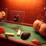 Museo del Sexo en Praga, un curioso recorrido 3