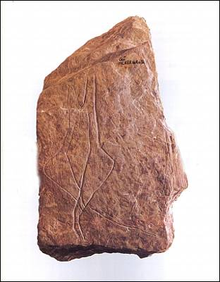 Homosexualidad prehistórica 1