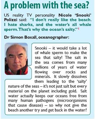 El esperma de ballena y la mar salada 1