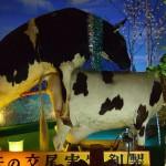 El Museo del sexo de Beppu, muy raro 4